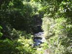 Los  Chorros Waterfall