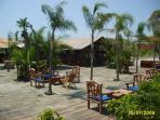 summer beach bar