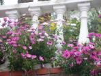 la balconata di Villa Oasi