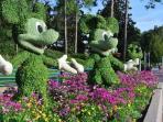 Epcot Garden Festival