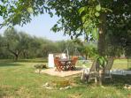 Garden, sun terrace, olive grove & childrens play equipment