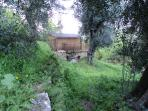 Alternative view of Olive Tree Lodge.