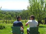 conversation in the wineyard