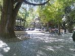 nearby central garden