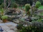 Extensive shared gardens