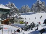 Skiing in the Troodos mountains