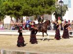 Stallion flamenca at Terra Mitica