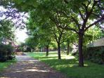 Chemin privatif ombragé, amenant vers le jardin et la maison