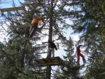 Tree top adventure at Cote 2000