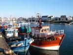L'arrivée des bateaux au port du Guilvinec