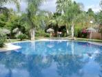 The fabulous pools and tropical gardens