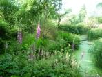 The pond is a perfect place to relax and watch the wildlife (e.g. frogs, newts and dragonflies)