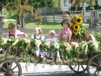 Filzmoos has many festivals during the summer and a brass band that plays every Friday evening