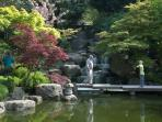 The beautiful Japanese garden in Holland Park 10 minutes walk away.