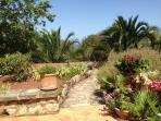 Jardin mediterraneo de 2000 mt con vistas al mar
