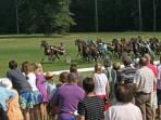 Annual horse racing in Richelieu Park