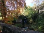 The Autumn colours