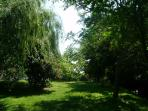 Another view of the woods , the lawn  and every part is for you to enjoy as you wish .