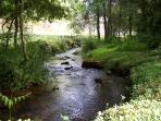 The Stream Which Runs Past The Mill containing brown trout which you are welcome to try and catch!