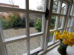 Daffs in the Front Window! Secluded, Quiet and Pretty Courtyard - great to sit out on the oak b