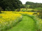 Wild flower meadow with paths leading to Orroland's landscaped loch