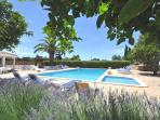 2 acres Beachcomber garden. A large swimming and paddling pool, perfect for family holiday swim.