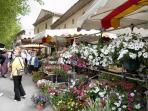 Flower stall every Friday