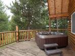 Luxury Mountain Lodge!