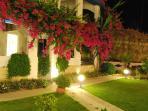 Our beautitul garden