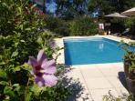 Pool surrounded with flowering shrubs