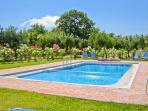 Garden - Private Pool