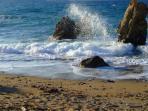 Pachena beach (1.5 km): long sandy beach with many coves