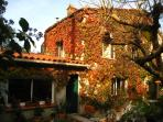 maison recouverte de verdure en automne
