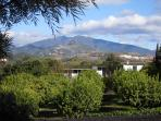 View of orchards and mountains from the kitchen