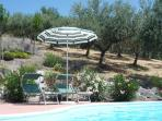 The pool's bordered by olive groves, which supply our own oil