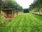 The 250ft paddock also has the added feature of a covered picnic/smoking area with built in BBQ