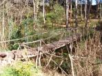 Hand-crafted bridge from logs in our woods