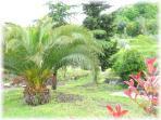 Il Giardino degli Angeli