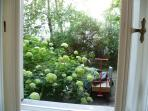 View into courtyard from kitchen window