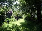 Explore the hidden corners of the gardens