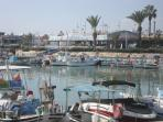 The colourful fishing fleet at Ayia Napa harbour.