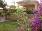 La Buena Vida Casita (Guest House)