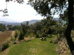 the garden has a view on Todi, benchs in the shadow, deckchairs and beautiful roses