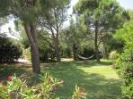 Lazying in the hammock in the shade of the pine trees - large garden surrounds the house