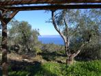 pergola with a view to the sea