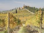 Vineyards and Castles are a usual view in Chianti