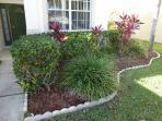Decorative front garden