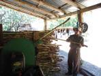 Fortuna de Bagaces Old Fashion Sugar Cane Mill