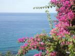 colors of Sicily