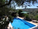 Our pool amidst the Olive Groves
